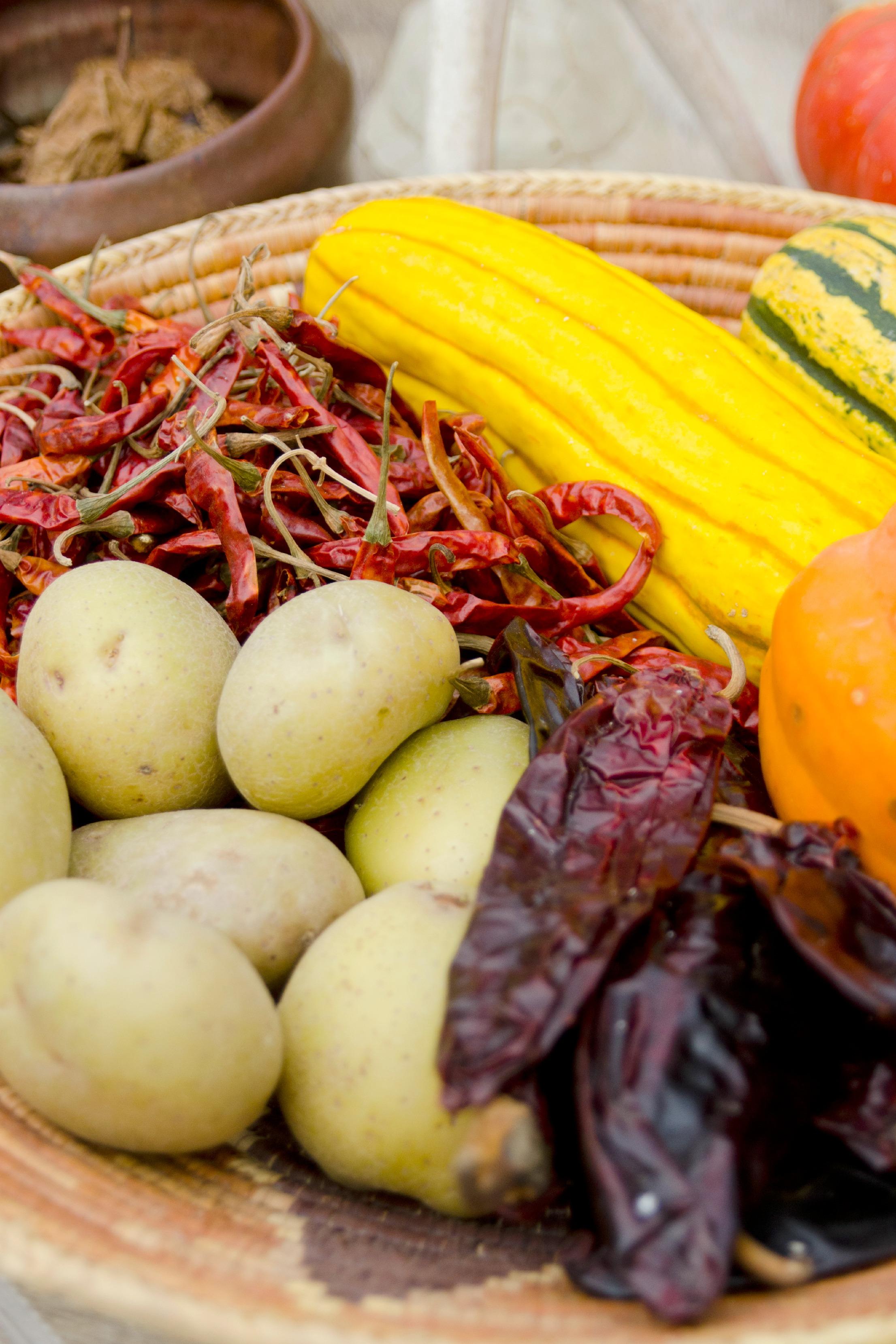 food and diet  cherokee